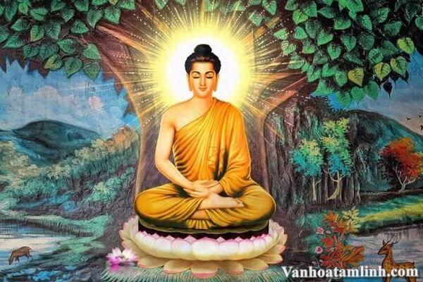 Nguồn gốc của Phật Giáo, lịch sử ra đời và phát triển của đạo Phật
