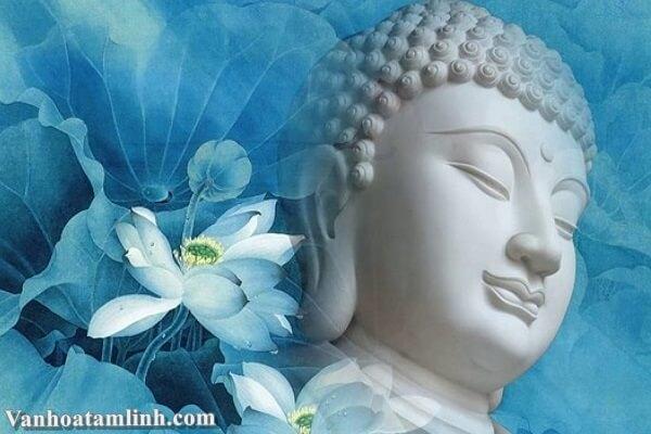 Vấn đề tâm vật trong đạo Phật